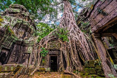 que ver en camboya en 7 dias