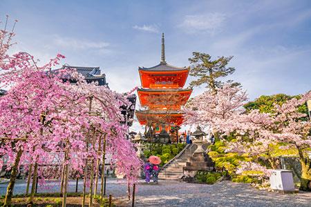 viajar a japon 1 semana
