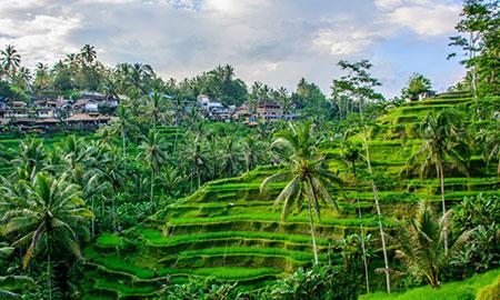Ruta de 7 dias en Indonesia