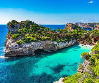 Free Tour por Mallorca